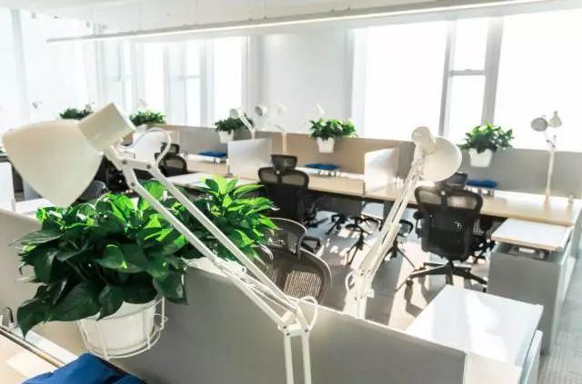 腾讯新总部大楼曝光,藏着腾讯让4万员工拼命工作的套路! 会计职场 第6张